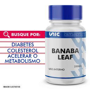 Banaba-Leaf-250mg-60Cps